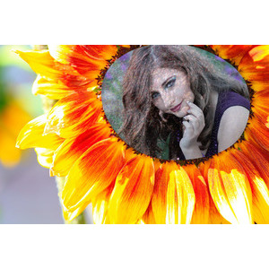 Your Picture On Sunflower 889 photo effect