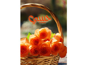 Type your lover's name on the Orange Flower Basket