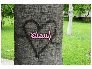 Heart painted on a tree trunk