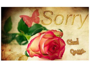 Type the apology on card with a rose and a butterfly