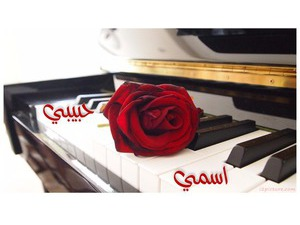 Piano with red rose
